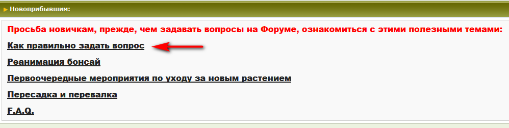 форум_02.PNG