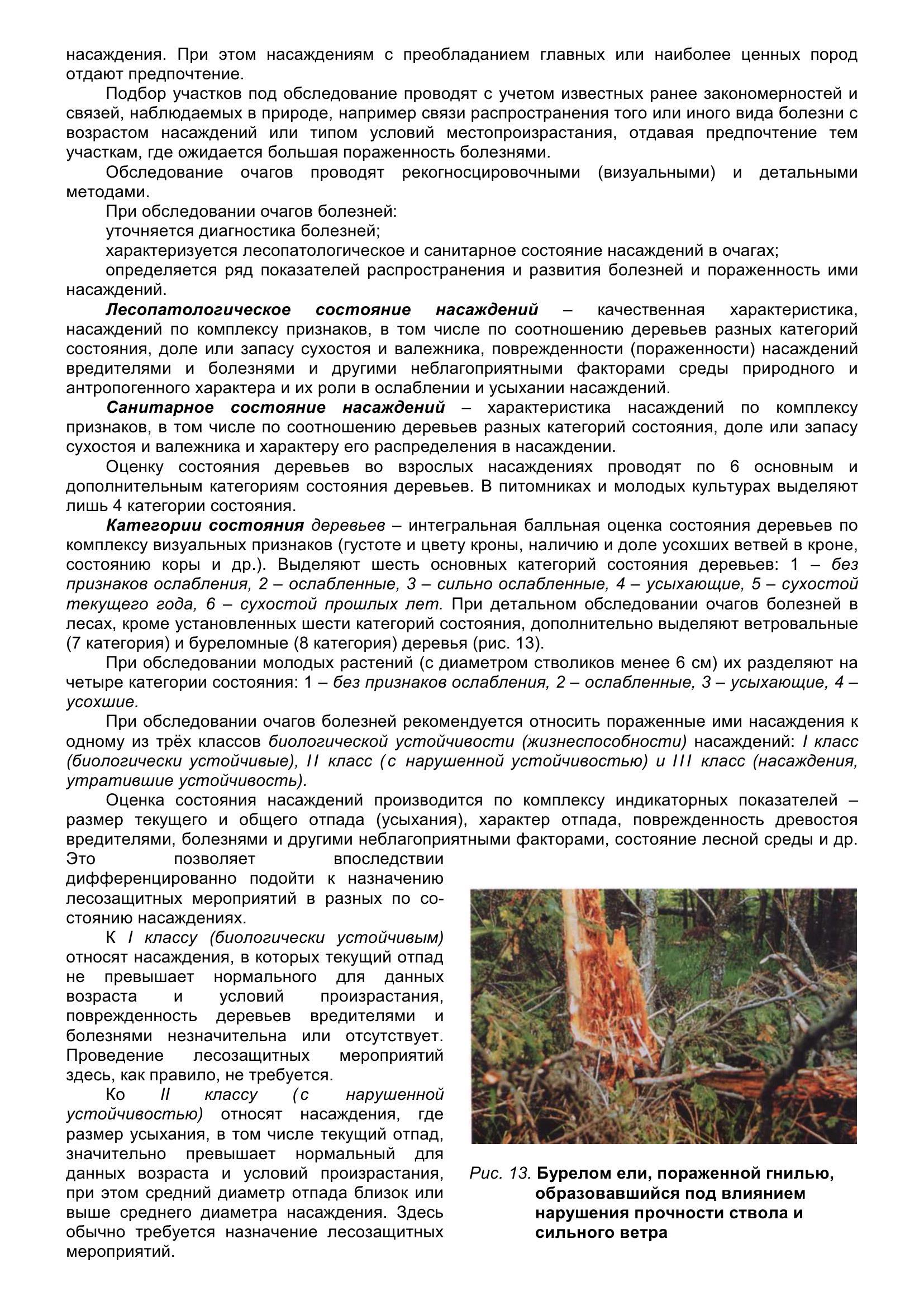 Болезни_древесных_растений_029.jpg