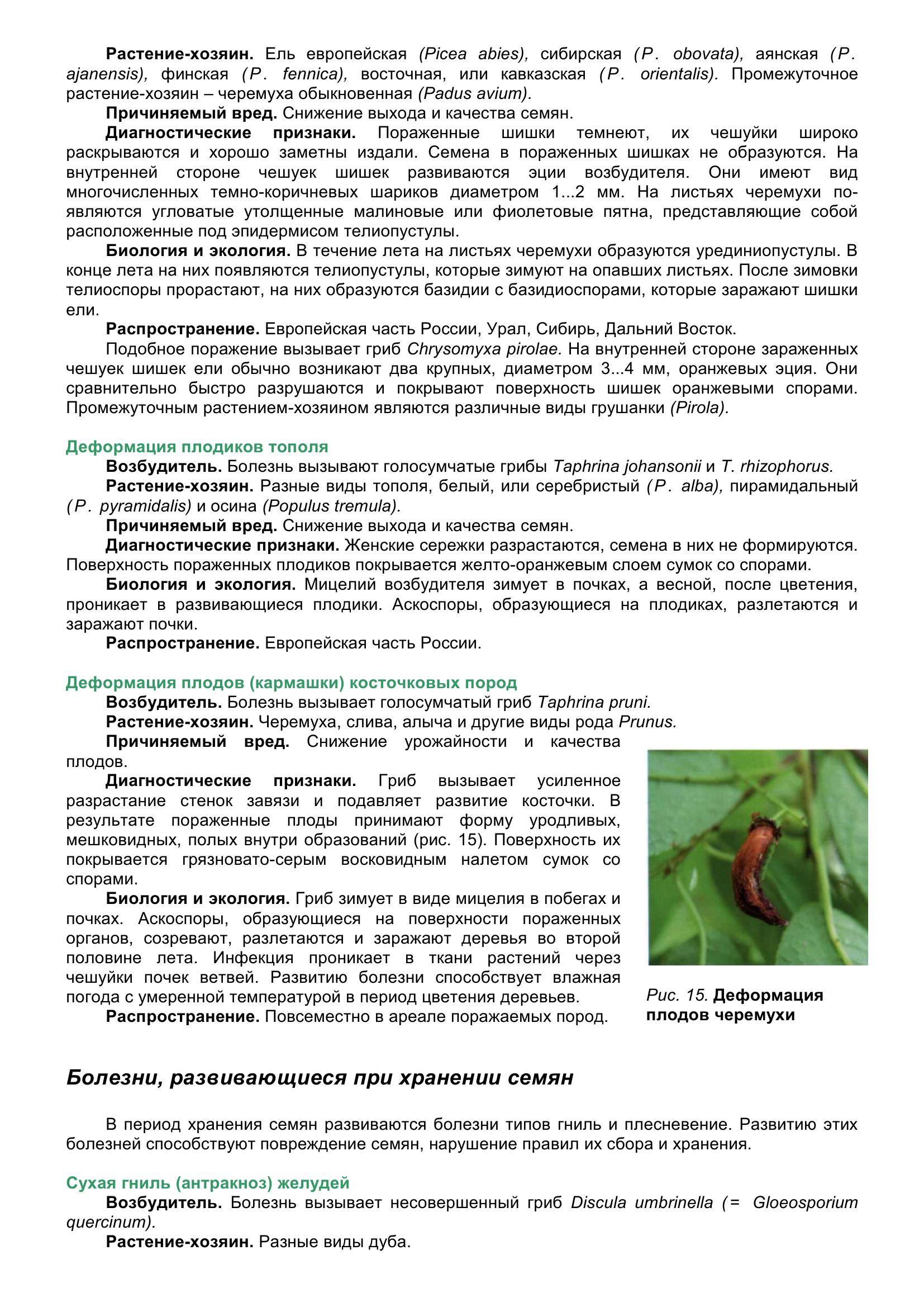 Болезни_древесных_растений_033.jpg