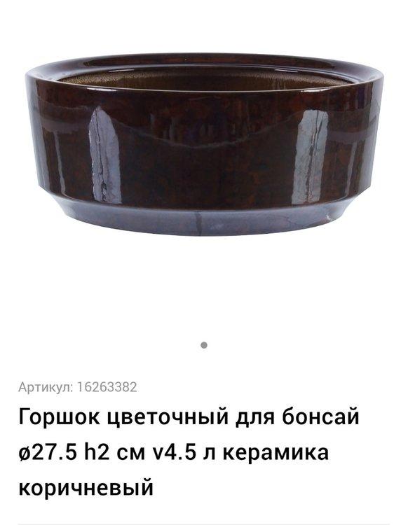 20210319_001620.jpg